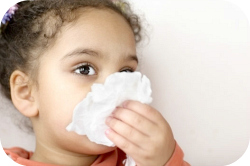 Glandore child care