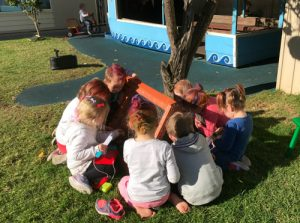 play yard glandore child care